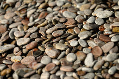 Kiesel auf einem Strand lizenzfreies stockbild