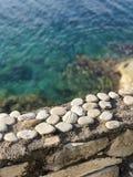 Kiesel auf Steinleiste nahe bei Meer lizenzfreies stockbild