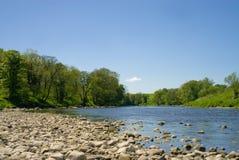 Kiesel entlang dem Flussbett Lizenzfreie Stockbilder