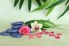 Kiesel gestapelt auf Zenlebenmode mit einer rosa Blume und einer Orchidee auf Grün und Laubhintergrund Lizenzfreies Stockfoto