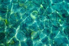Kiesel unter klarem Wasser Lizenzfreie Stockfotos