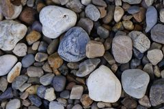 Kieselsteingarten, der Felsenbeschaffenheits-Hintergrund ausbreitet stockfoto