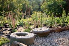 Kiesterrasse mit Flecken von mehrjährigen Pflanzen Lizenzfreies Stockbild