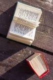 Kieszeniowi słowniki Fotografia Stock
