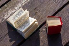 Kieszeniowi słowniki Zdjęcia Royalty Free
