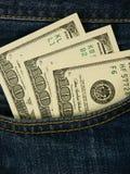 Kieszeniowy pieniądze Obraz Stock