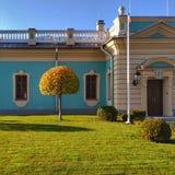 Kiev, arbre d'automne avec une couronne figurée photographie stock