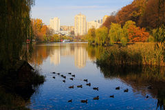 Kiev in autumn Stock Images