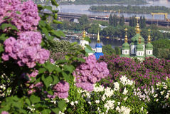 Kiev Botanical Garden in spring Stock Image