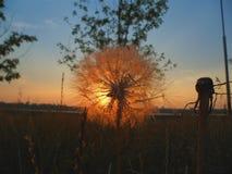Kiev dawn on the river Dnepr, Ukraine.  stock images