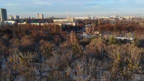 KIEV, KYIV, UCRÂNIA - 18 DE NOVEMBRO DE 2018: Ideia aérea das paisagens bonitas de Kiev, árvores no parque, cidade video estoque