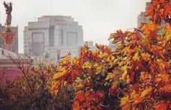 Kiev ou Kyiv no outono fotos de stock