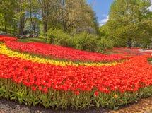 KIEV, parque del paisaje de la demostración de la Ucrania-flor en Kiev Fotografía de archivo libre de regalías