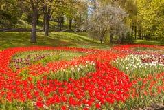 KIEV, parque del paisaje de la demostración de la Ucrania-flor en Kiev Fotografía de archivo