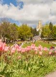 KIEV, parque del paisaje de la demostración de la Ucrania-flor en Kiev Fotos de archivo libres de regalías