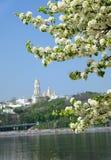 Kiev spring Royalty Free Stock Image