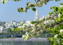 Kiev spring Royalty Free Stock Photography
