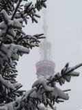 Kiev TV Tower Stock Photography