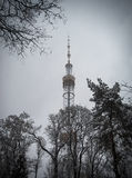 Kiev TV Tower Stock Photo