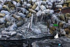 KIEV, UCRAINA - 26 gennaio 2014: Proteste antigovernative di massa Fotografie Stock