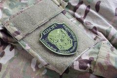 KIEV, UCRAINA - 08 luglio, 2015 Distintivo uniforme ufficioso dell'esercito dell'Ucraina Immagini Stock Libere da Diritti