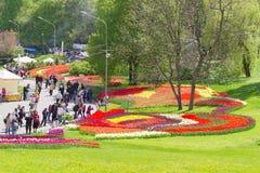 Kiev, Ucrania - 23 de abril de 2016: Camas de flor de tulipanes multicolores en la exposición de los tulipanes fotos de archivo