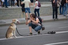 Kiev, Ucrania - 9 de julio de 2017: La mujer toma imágenes de un perro mestizo Imagen de archivo libre de regalías