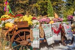 KIEV, UCRANIA - OCTOBER11: Parque i del paisaje de la demostración de Chrysanthemumsr Fotografía de archivo libre de regalías