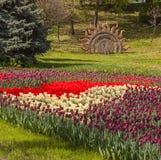KIEV Ukraina-blomma showlandskap parkerar i Kiev Arkivbilder
