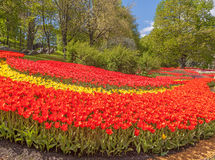 KIEV Ukraina-blomma showlandskap parkerar i Kiev Royaltyfri Fotografi