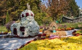KIEV UKRAINA - OCTOBER11: Det Chrysanthemumsr showlandskapet parkerar I Arkivbilder