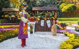 KIEV UKRAINA - OCTOBER11: Det Chrysanthemumsr showlandskapet parkerar I Royaltyfria Foton