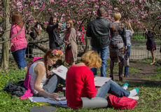 Kiev, Ukraine - April 14, 2016: Girls in the garden draw from na. Ture blooming magnolias Stock Images