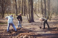 People clean the forest, fight for the purity of nature royalty free stock images