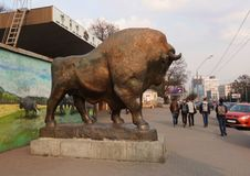 Sculpture of a bison near the zoo in Kiev royalty free stock photo