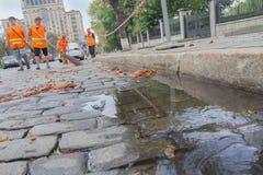 Kiev, Ukraine - August 30, 2016: Workers in orange vests sweep the pavemen stock images