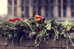 Kiev, Ukraine, February: flowers, lamps in memory Royalty Free Stock Images