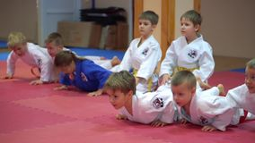 KIEV, UKRAINE - February 6, 2017: Juniors do push-ups on the hands on tatami stock footage