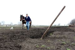 Kiev, Ukraine, 05.04.2013 A man leads a horse which plows the so royalty free stock photography
