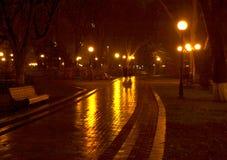 Kiev. Ukraine.Maryinskiy park. Night view. stock image