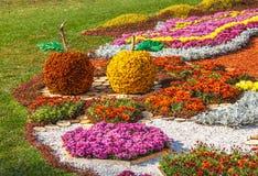 KIEV, UKRAINE - OCTOBER11: Chrysanthemumsr Show Landscape Park i Royalty Free Stock Photos