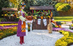 KIEV, UKRAINE - OCTOBER11: Chrysanthemumsr Show Landscape Park i Royalty Free Stock Photos