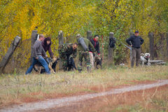 Kiev, Ukraine - 25 octobre 2015 : L'instructeur forme les chiens de garde agressifs Photo stock