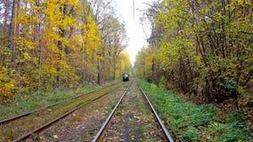 KIEV, UKRAINE - 21 OCTOBRE 2018 : Les forêts de station thermale de Pushcha-Voditsa sont secteur récréationnel populaire parmi le banque de vidéos