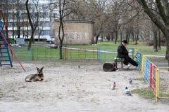 Kiev, Ukraine, 16 04 2006 Un vieil homme et un chien sont sur le terrain de jeu de la cour images stock
