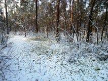 Kiev vinter Arkivbild