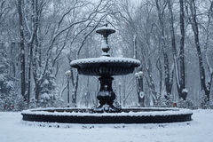 Kiev winter, Mariinsky park Stock Image