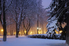 Kiev winter, Mariinsky park Stock Images