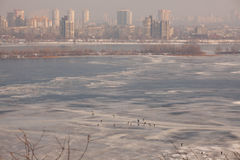 Kiew im Winter Lizenzfreies Stockbild