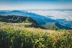 Kiew Mae Pan Nature Study på Doi Inthanon Royaltyfri Fotografi